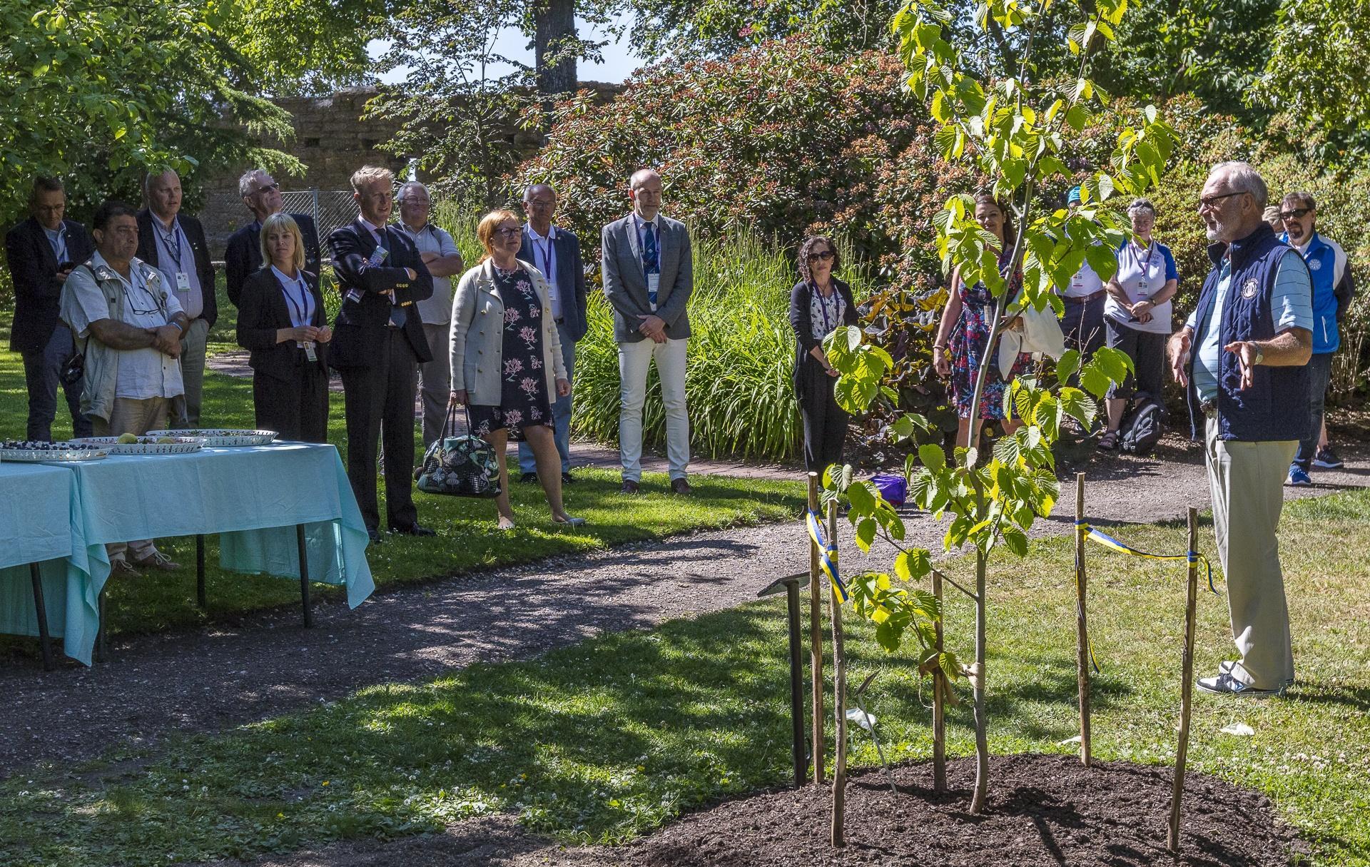 (Svenska) Island Games Planterar Näsduksträd I Botan