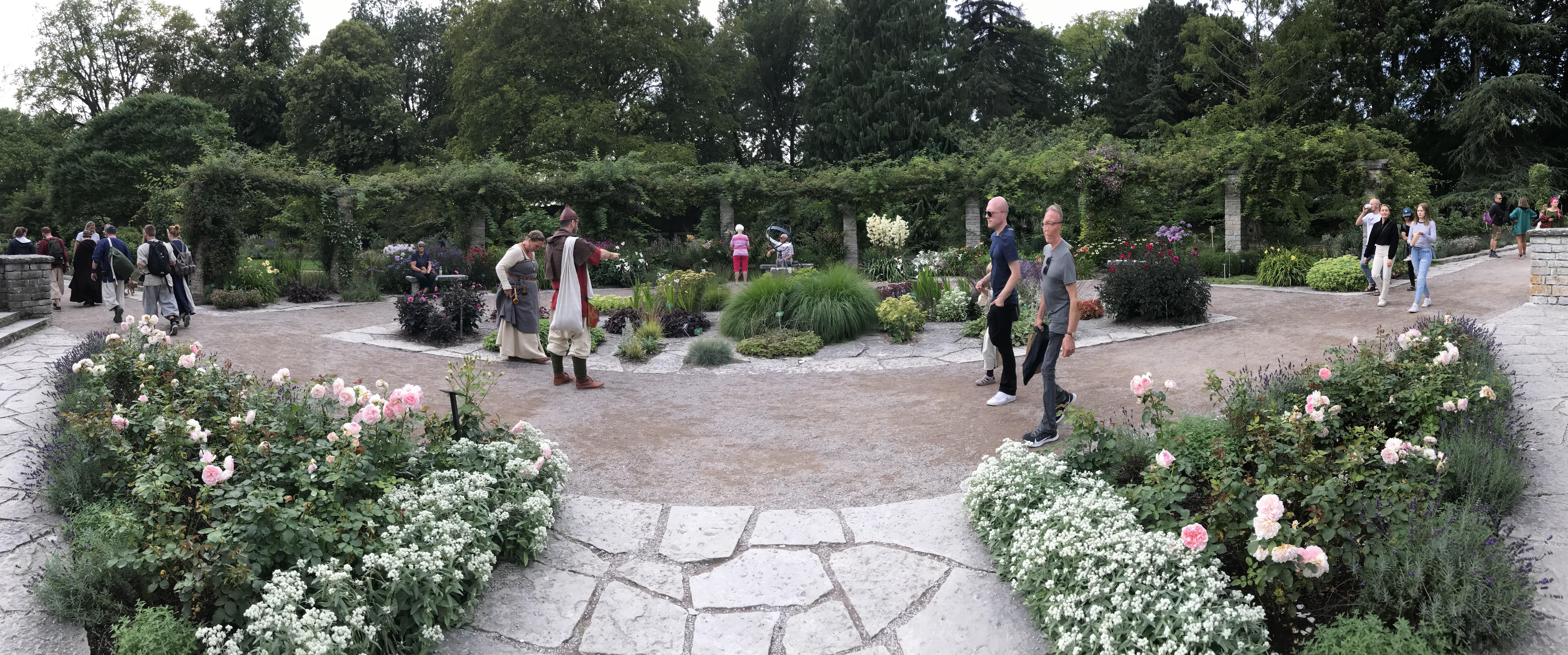 Solvisarplan i DBWs trädgård 2019. Medeltidsvecka